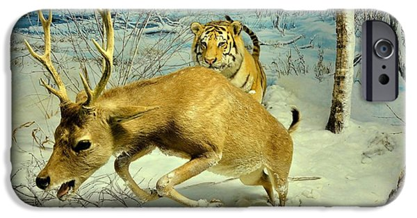 The Tiger iPhone Cases - Tiger attack deer iPhone Case by Andrei Draghici