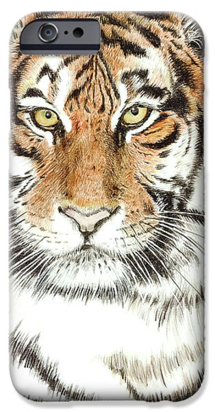 The Tiger iPhone Cases - Tiger in the Wild iPhone Case by Grant Little