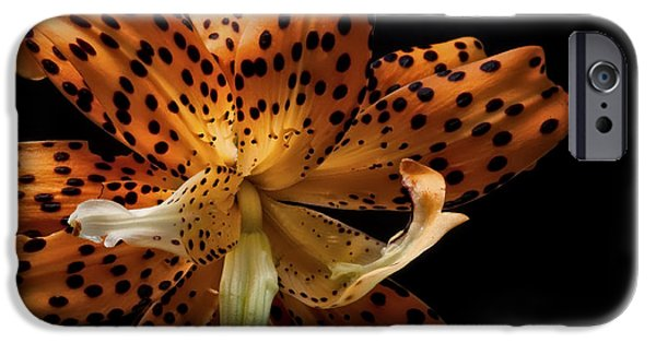 Floral Photographs iPhone Cases - Tiger Lily iPhone Case by Kurt Golgart