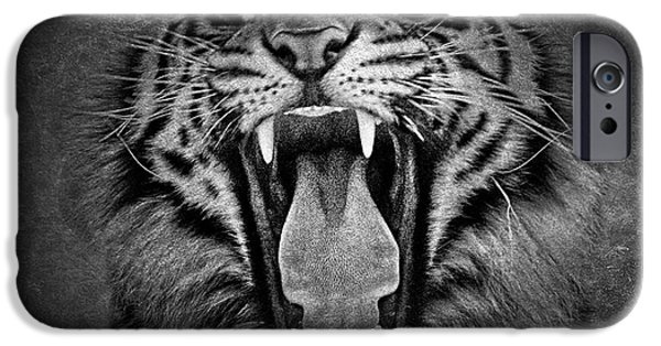 The Tiger iPhone Cases - Tiger Roar iPhone Case by Athena Mckinzie