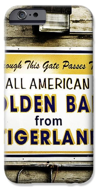Tigerland Band iPhone Case by Scott Pellegrin