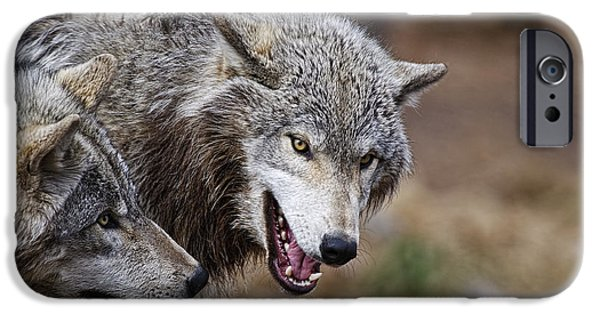 Arctic Wolf Mixed Media iPhone Cases - Timber Wolves iPhone Case by Michael Cummings