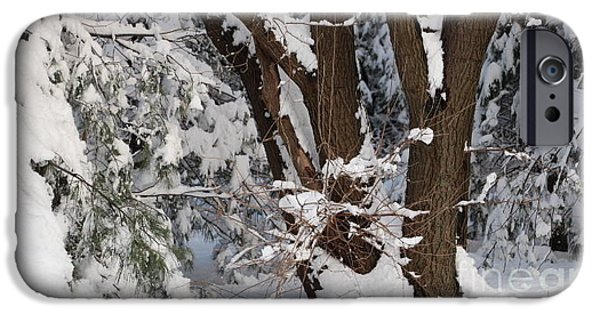 Wintertime iPhone Cases - Time for Winter iPhone Case by Jari Hawk