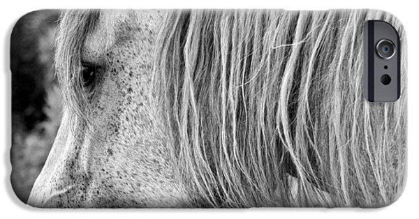 The Horse iPhone Cases - Time to go home bw iPhone Case by Luc Bovet