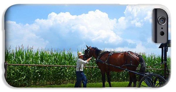 Amish Community Photographs iPhone Cases - Time To Go Home iPhone Case by Tina M Wenger
