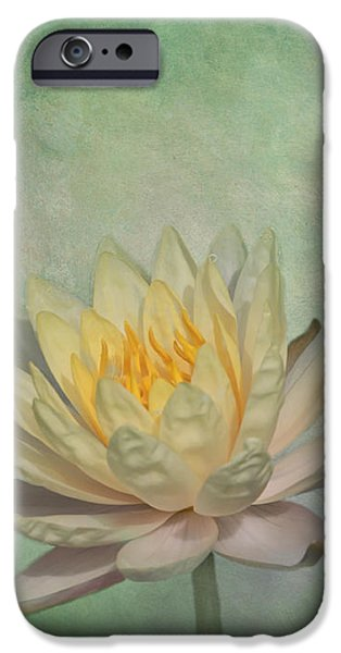 Pastel iPhone Cases - Timeless Beauty - Yellow Water Lily iPhone Case by Kim Hojnacki