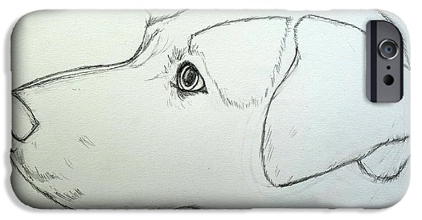 Blue Healer Drawings iPhone Cases - Tinker Pencil Sketch iPhone Case by Kirsten Sneath