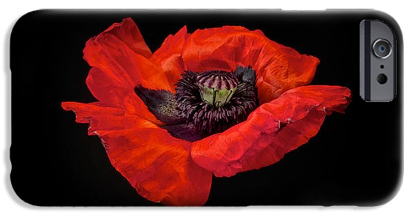 Floral Art iPhone Cases - Tiny Dancer Poppy iPhone Case by Toni Chanelle Paisley