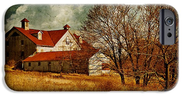 Old Barn iPhone Cases - Tired iPhone Case by Lois Bryan
