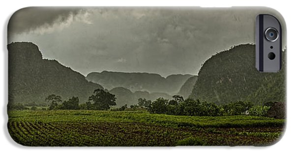 Rainy Day iPhone Cases - Tobacco plantation under the rain iPhone Case by Jose  Rey