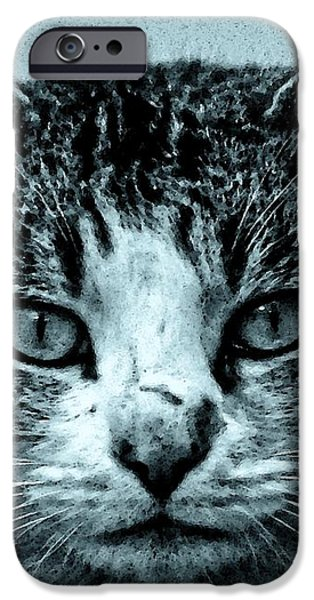 Tom Cat iPhone Case by TONY GRIDER