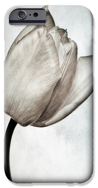 Flora iPhone Cases - Toned Tulip iPhone Case by John Edwards