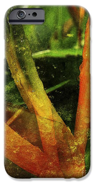 Abstract Digital Mixed Media iPhone Cases - Topia 2 iPhone Case by Kaypee Soh - Printscapes