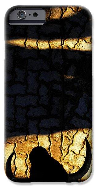 TORO iPhone Case by Rafa Rivas