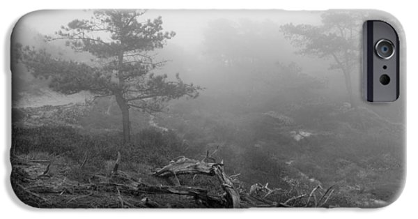 Marine iPhone Cases - Torrey Pines in Fog iPhone Case by Joseph Smith