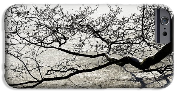 Wintertime iPhone Cases - Touch iPhone Case by Angela Doelling AD DESIGN Photo and PhotoArt