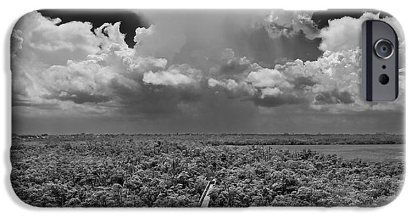 Mangrove Forest iPhone Cases - Tower View West iPhone Case by Robert Grauer