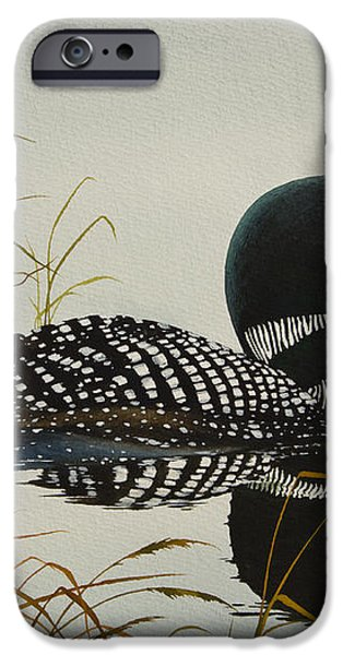 Tranquil Stillness of Nature iPhone Case by James Williamson