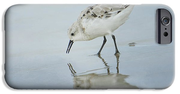 Animals Photographs iPhone Cases - Tranquility iPhone Case by Fraida Gutovich