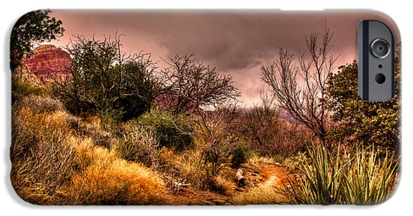 Fault iPhone Cases - Traveling the Trail at Red Rocks Canyon iPhone Case by David Patterson