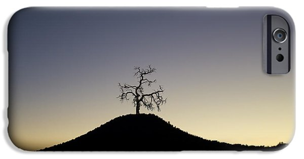 Dave iPhone Cases - Tree and Hill Color Montage iPhone Case by David Gordon