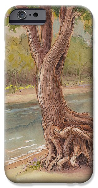 Minnesota iPhone Cases - Tree by the River iPhone Case by Tracie Thompson
