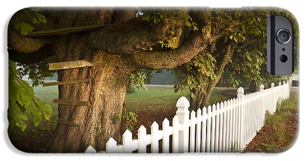 Innocence iPhone Cases - Tree House Along Country Road iPhone Case by Jim Corwin