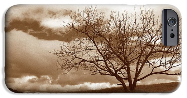 Tree Art Print iPhone Cases - Tree in Storm iPhone Case by Kathy Yates