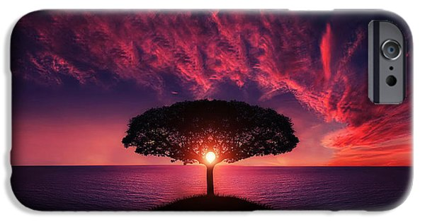 Sunset Prints iPhone Cases - Tree in sunset iPhone Case by Bess Hamiti