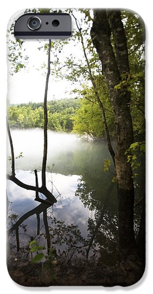 Bayou iPhone Cases - Tree Landscape With Foggy Water iPhone Case by Gillham Studios