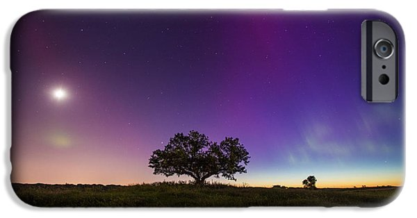 Mounds iPhone Cases - Tree of Aurora iPhone Case by Aaron J Groen