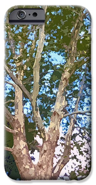 Abstract Digital Photographs iPhone Cases - Tree on The Common iPhone Case by Jean Hall
