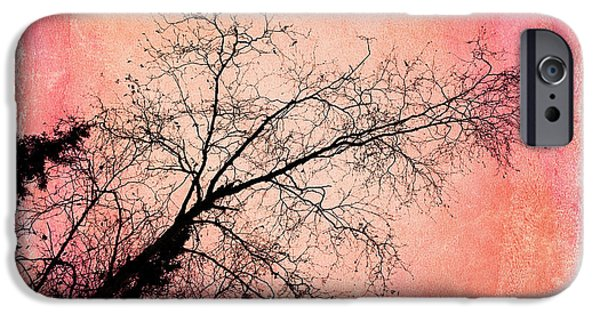 Birch Tree iPhone Cases - Tree silhouettes I iPhone Case by Priska Wettstein