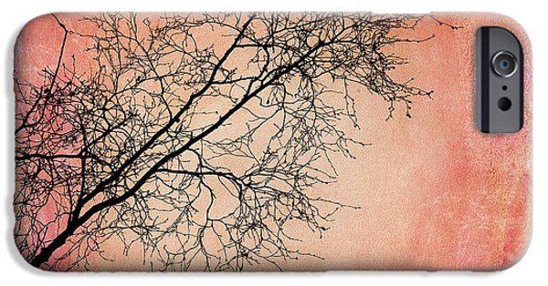 Birch Tree iPhone Cases - tree silhouettes II iPhone Case by Priska Wettstein