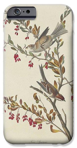 Sparrow iPhone Cases - Tree Sparrow iPhone Case by John James Audubon