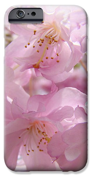 Tree Spring Pink Flower Blossoms art print Baslee Troutman iPhone Case by Baslee Troutman