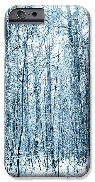 Wolf Picture Art iPhone Cases - Tree Trunks Pattern iPhone Case by Svetlana Sewell