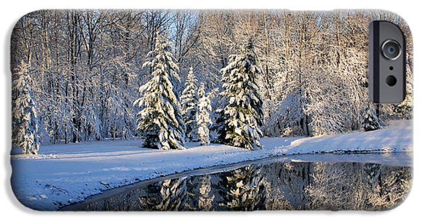 Trees Reflecting In Water iPhone Cases - Treeflections iPhone Case by Kristin Elmquist