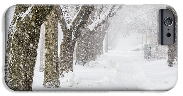 Storm iPhone Cases - Treelined Street During A Snow Storm iPhone Case by Pete Hendley