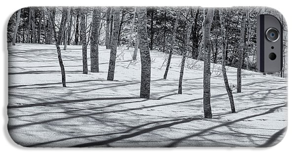 Winter In Maine iPhone Cases - Trees And Shadows iPhone Case by Tom Singleton