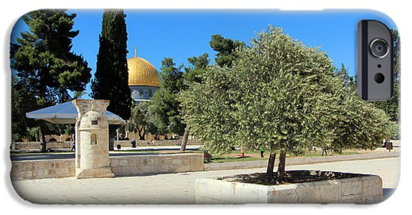 The Dome iPhone Cases - Trees at Al Aqsa iPhone Case by Munir Alawi