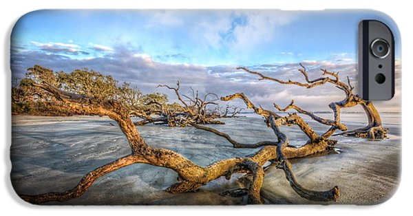 Beach Landscape iPhone Cases - Trees at Dawn iPhone Case by Debra and Dave Vanderlaan