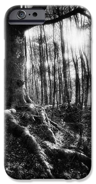 Strange iPhone Cases - Trees at the entrance to the Valley of No Return iPhone Case by Simon Marsden