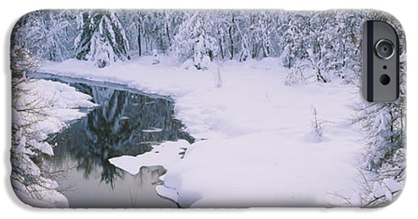Frigid iPhone Cases - Trees At The Lakeside, New York State iPhone Case by Panoramic Images