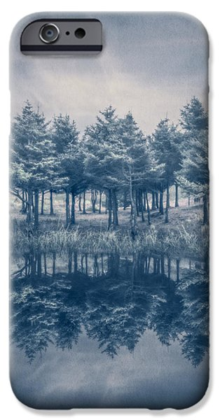 Sanddunes iPhone Cases - Trees in Blue iPhone Case by Debra and Dave Vanderlaan