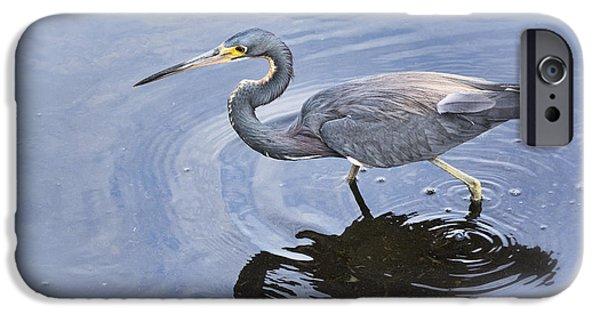 Little iPhone Cases - Tri-colored Heron Fishing  iPhone Case by Saija  Lehtonen