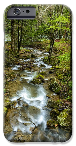 West Fork iPhone Cases - Tributary Back Fork of Elk River iPhone Case by Thomas R Fletcher