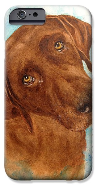 Chocolate Lab iPhone Cases - Triton iPhone Case by Bette Orr