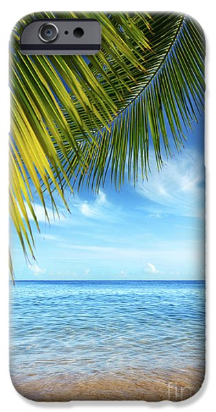 Tropical Beach iPhone Case by Carlos Caetano