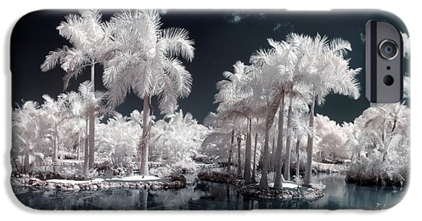 Nature Study iPhone Cases - Tropical Paradise Infrared iPhone Case by Adam Romanowicz